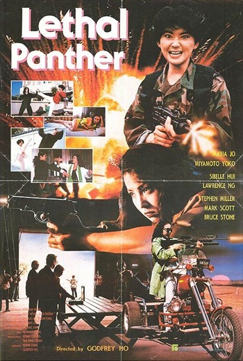 Lethal Panther 1990 UNRATED Dual Audio Hindi 300mb Movie Download