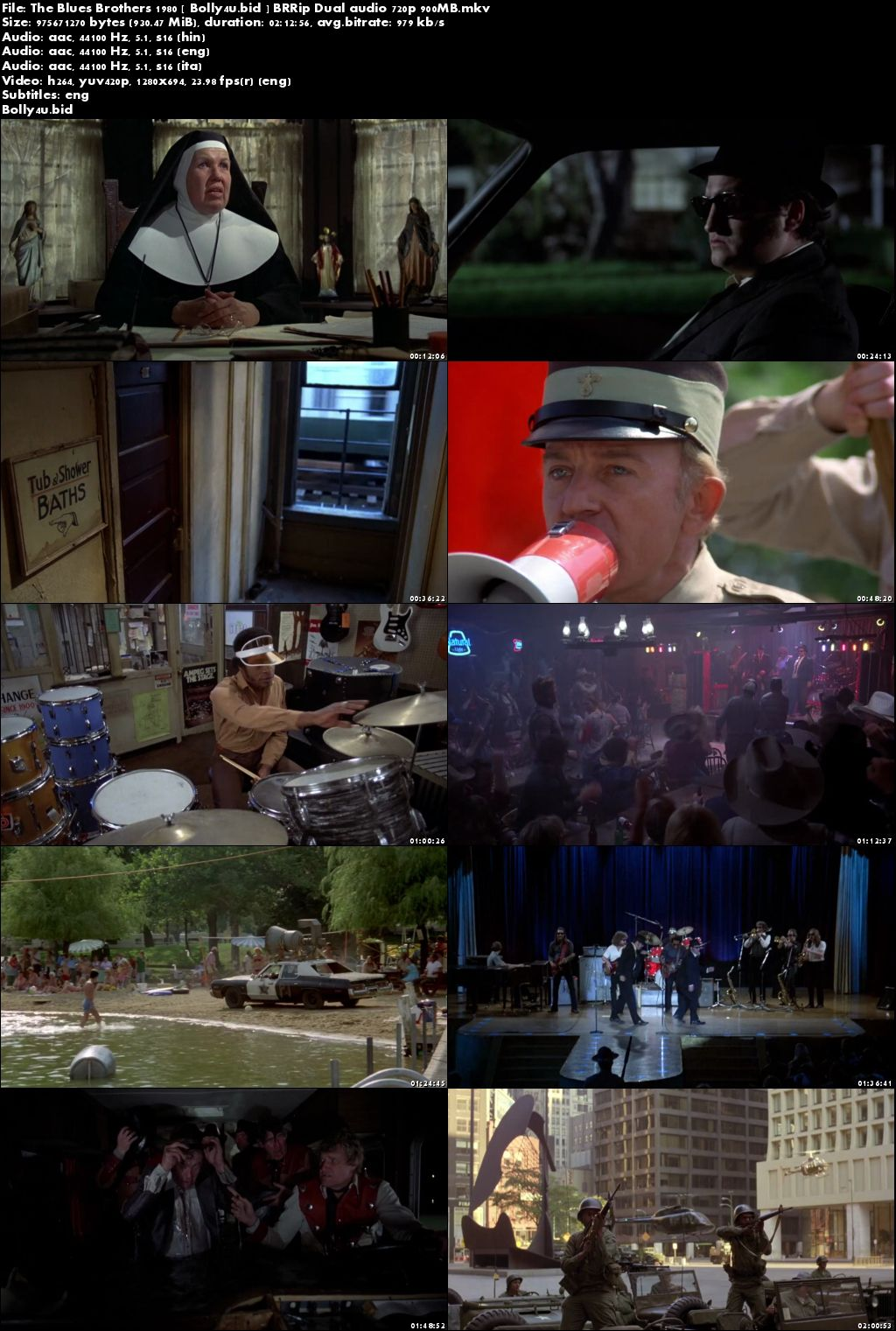 The Blues Brothers 1980 BRRip 450MB Hindi Dual Audio 480p Download
