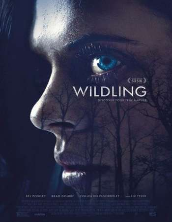 Wildling 2018 English 720p WEBRip 700MB ESubs