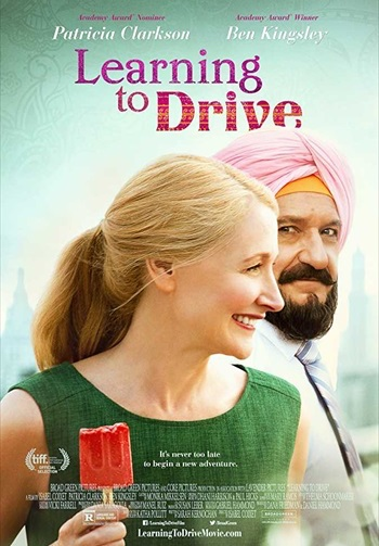 Learning To Drive 2014 Dual Audio Hindi Full Movie Download