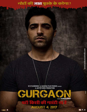 Gurgaon 2017 Hindi 300MB HDRip 480p