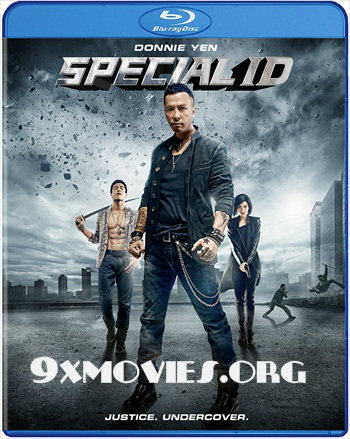 Free Download Special ID 2013 Dual Audio Hindi 720p BluRay 800mb