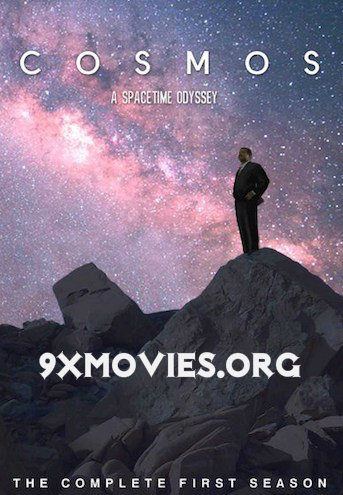 Cosmos A SpaceTime Odyssey 2014 S01 Complete Hindi Dubbed