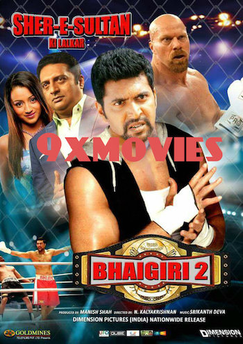 Bhaigiri 2 (2018) Hindi Dubbed 720p HDRip 1GB