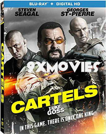 Cartels 2017 Dual Audio Hindi Bluray Movie Download