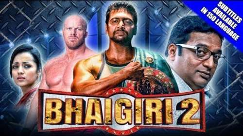 Bhaigiri 2 2018 Hindi Dubbed 720p HDRip x264