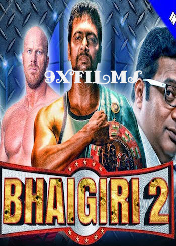 Bhaigiri 2 2018 Hindi Dubbed Full Movie Download