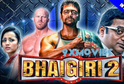 Bhaigiri 2 2018 Hindi Dubbed 720p HDRip 900mb