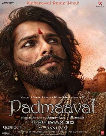 Padmaavat 2018 Hindi 700MB BluRay 720p ESubs HEVC