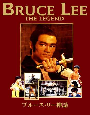 Bruce Lee the Legend 1984 Hindi Dual Audio 300MB HDTV 480p