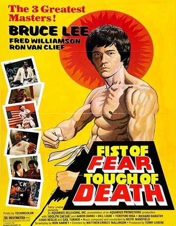 Poster Of Fist of Fear, Touch of Death In Dual Audio Hindi English 300MB Compressed Small Size Pc Movie Free Download Only At beyonddistance.com
