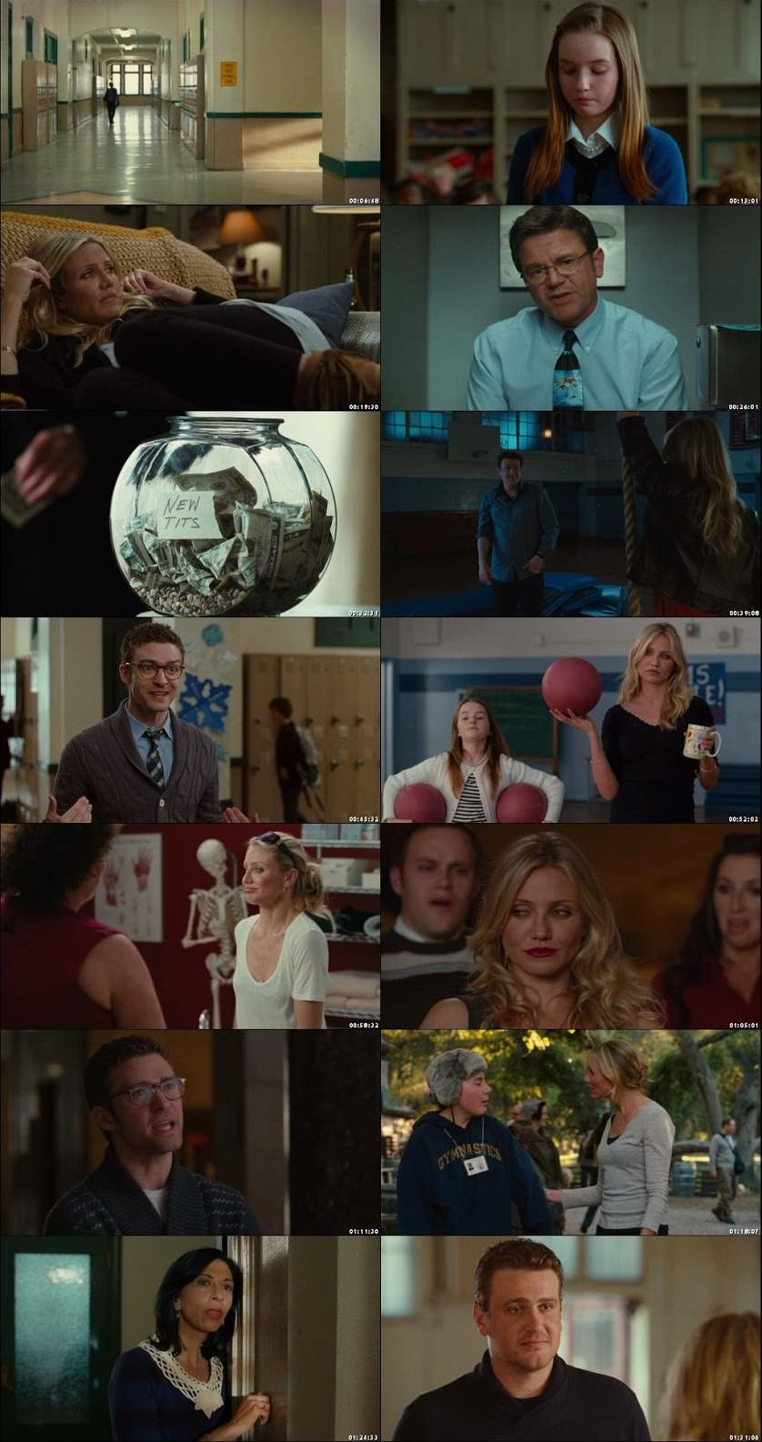 Bad Teacher 2011 Dual Audio Hindi BluRay Full Movie Download HD