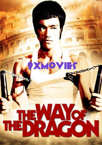 The Way of the Dragon 1972 Dual Audio Hindi Bluray Movie Download