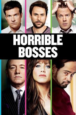 Horrible Bosses 2011 Extended Dual Audio [Hindi – English] 720p 850MB BRRip