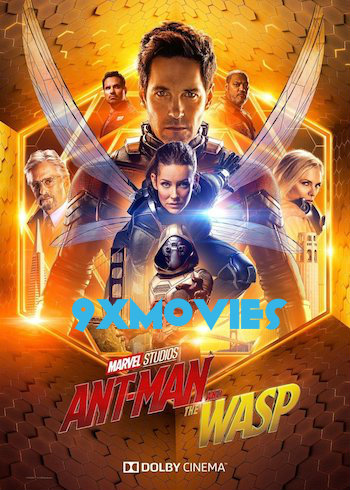 Ant-Man and the Wasp 2018 Dual Audio ORG Hindi 720p BluRay 900mb