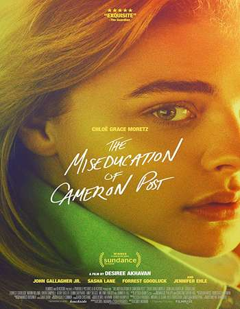 The Miseducation of Cameron Post 2018 English 720p AMZN Web-DL 700MB ESubs