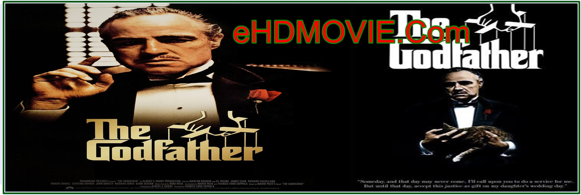 The Godfather 1972 Full Movie Dual Audio [Hindi – English] 720p BRRip 700MB ESubs HEVC Free Download
