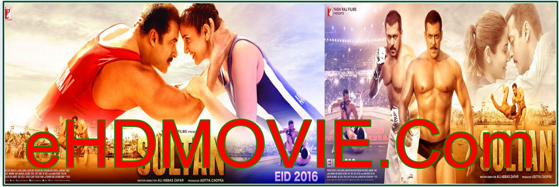 Sultan 2016 Full Movie Hindi 720p - 480p ORG BRRip 500MB - 1.2GB ESubs Free Download