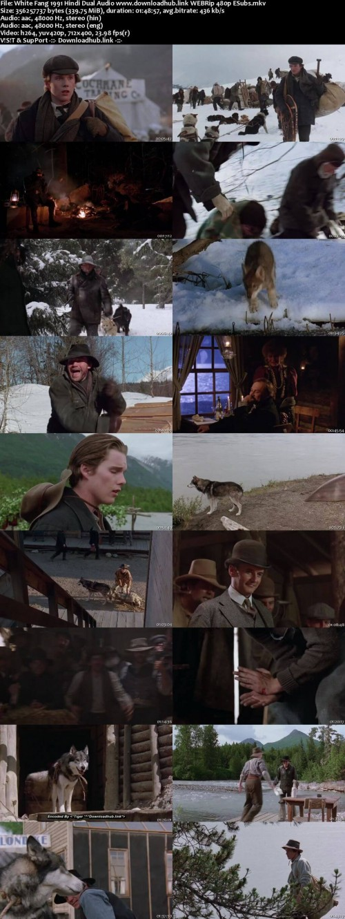 White-Fang-1991-Hindi-Dual-Audio-www.downloadhub.link-WEBRip-480p-ESubs_s.jpg