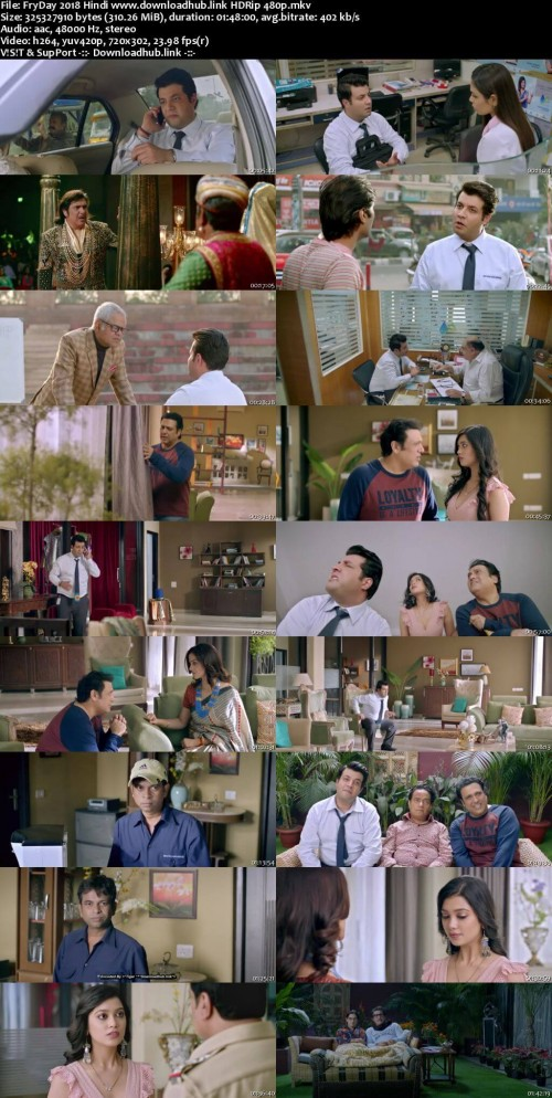 FryDay-2018-Hindi-www.downloadhub.link-HDRip-480p_s.jpg