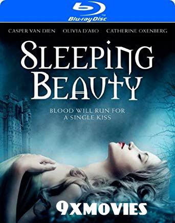 Sleeping Beauty 2014 Dual Audio Hindi 720p BluRay 800mb