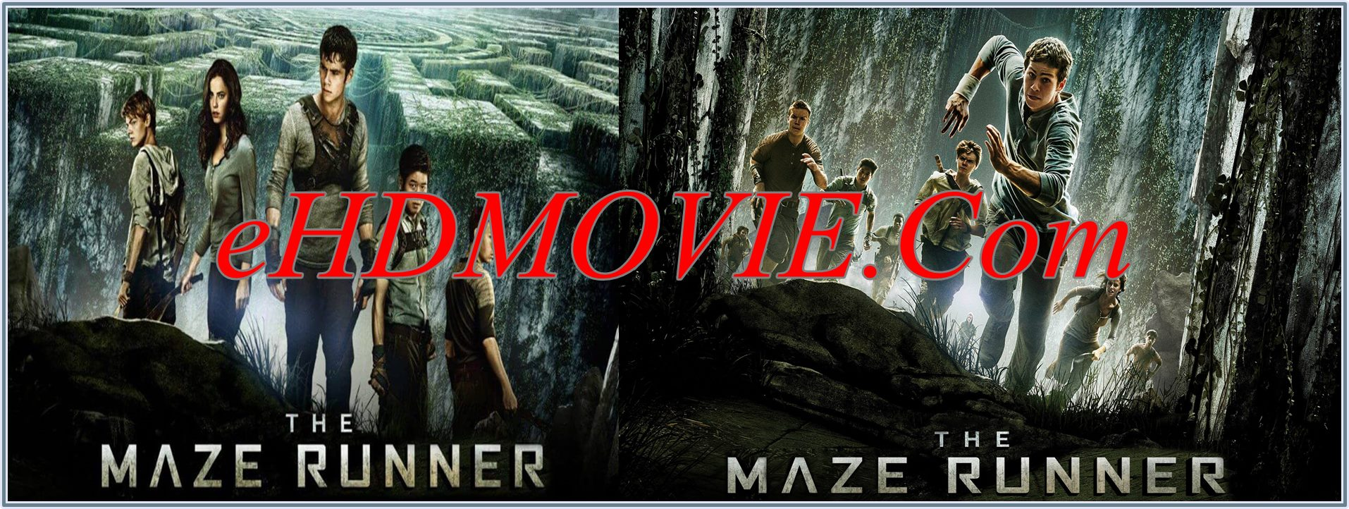 The Maze Runner 2014 Full Movie English 1080p - 720p - 480p ORG BRRip 400MB - 900MB - 2.2GB ESubs Free Download