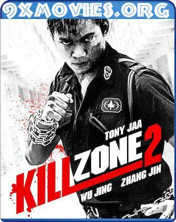 Kill Zone 2 (2015) Dual Audio Hindi UNCUT 720p  BluRay 950mb
