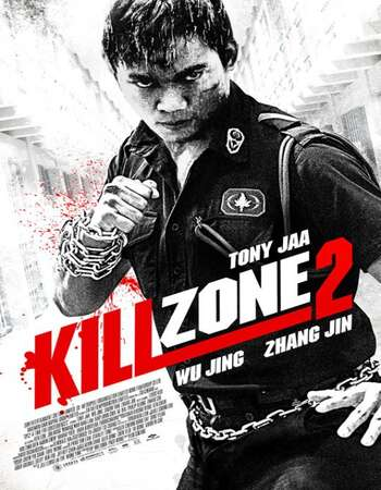 Kill Zone 2 2015 Hindi Dual Audio BRRip Full Movie 720p Free Download