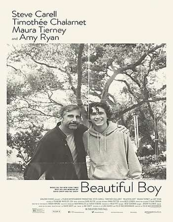 Beautiful Boy 2018 English Web-DL 480p 720p 1080p