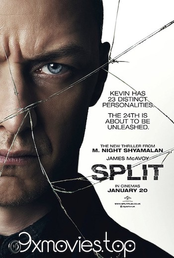 Split 2016 Dual Audio ORG Hindi 480p BluRay 350MB