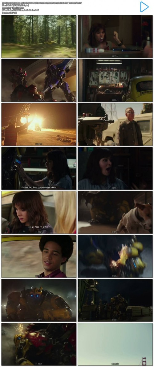 Bumblebee-2018-Hindi-Dual-Audio-www.downloadhub.trade-HC-HDRip-720p-HEVC.mkv.jpg