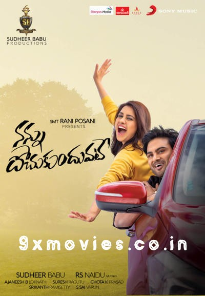 Nannu Dochukunduvate 2018 Dual Audio Hindi UNCUT 720p HDRip 1.1GB