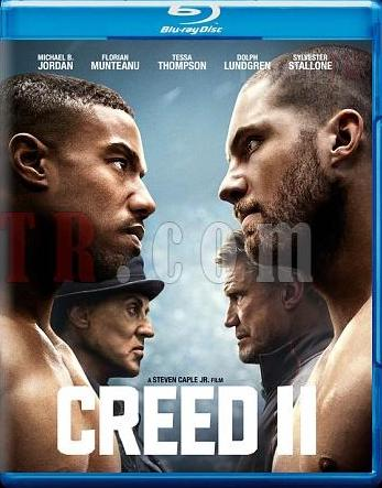 Creed II 2018 English 480p BRRip 400MB ESubs