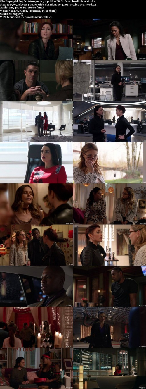 Supergirl.S04E12.Menagerie.720p.NF.WEB-DL.Downloadhub.wiki_s.jpg