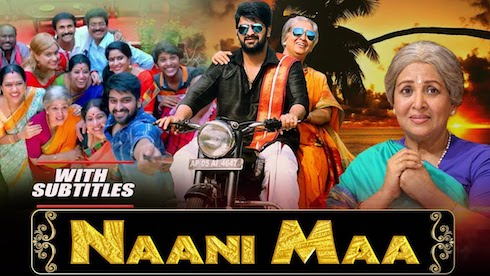 Naani Maa 2019 Hindi Dubbed Full 300mb Movie Download