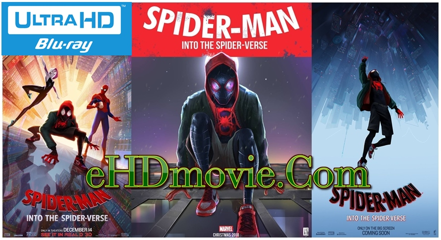 Spider-Man: Into the Spider-Verse 2018 Dual Audio [Hindi – English] 1080p – 720p – 480p ORG Blu-Ray 400MB – 600MB - 1.3GB – 3GB ESubs