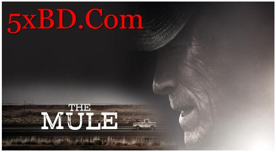 The Mule 2018 English 720p – 480p ORG Blu-Ray 450MB – 950MB ESubs