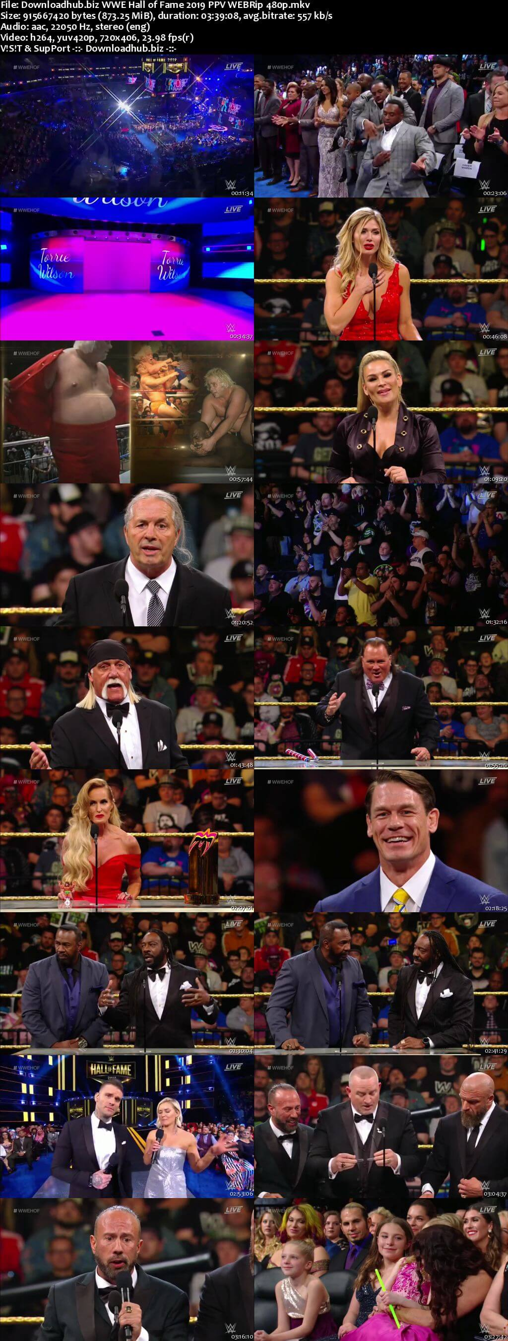 WWE Hall of Fame 6th April 2019 850MB PPV WEBRip 480p