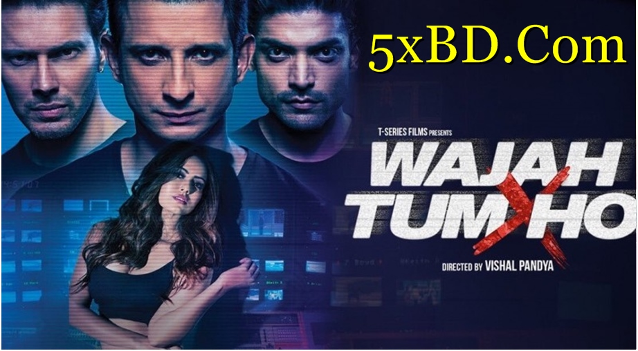 Wajah Tum Ho 2016 Hindi 720p – 480p ORG Blu-Ray 400MB – 1.2GB ESubs