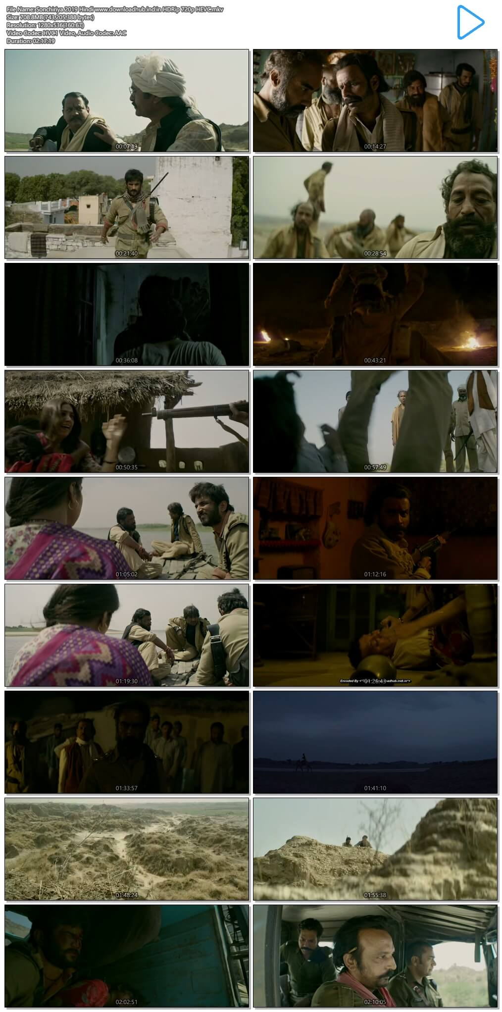 Sonchiriya 2019 Hindi 700MB HDRip 720p HEVC