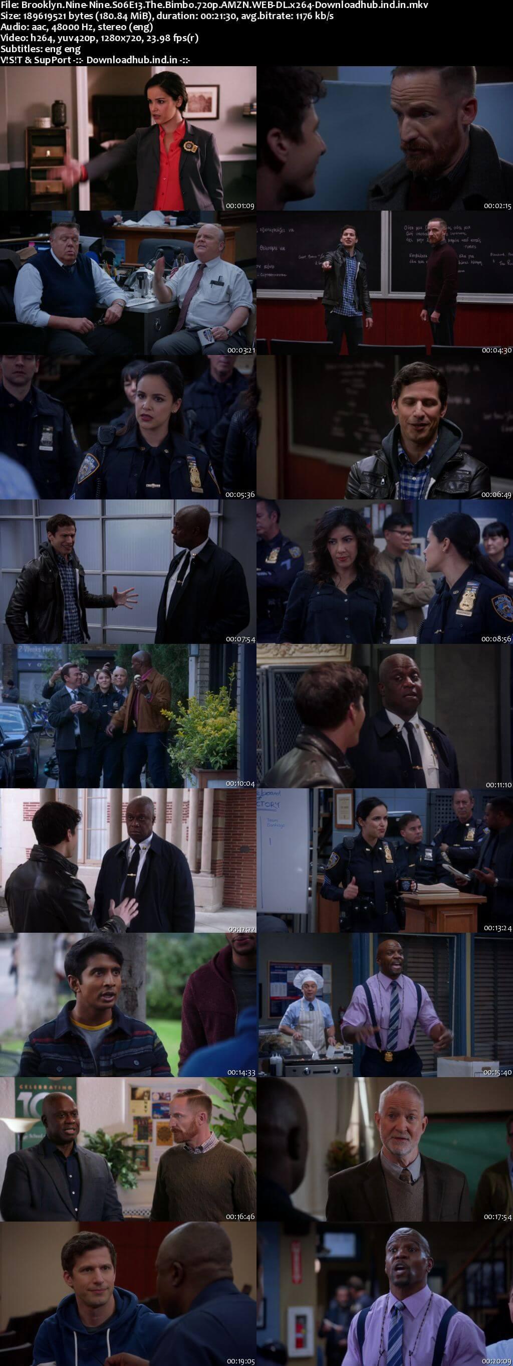Brooklyn Nine-Nine S06E13 170MB WEB-DL 720p ESubs