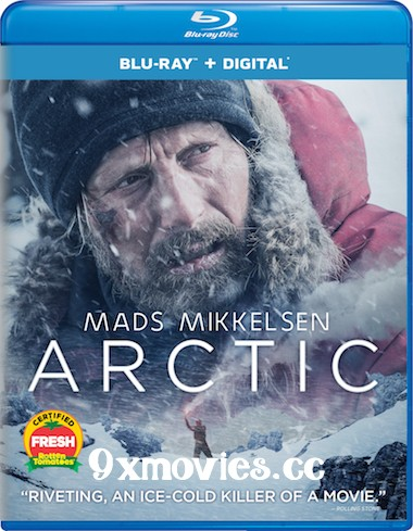 Arctic 2018 English 480p BRRip 300MB ESubs
