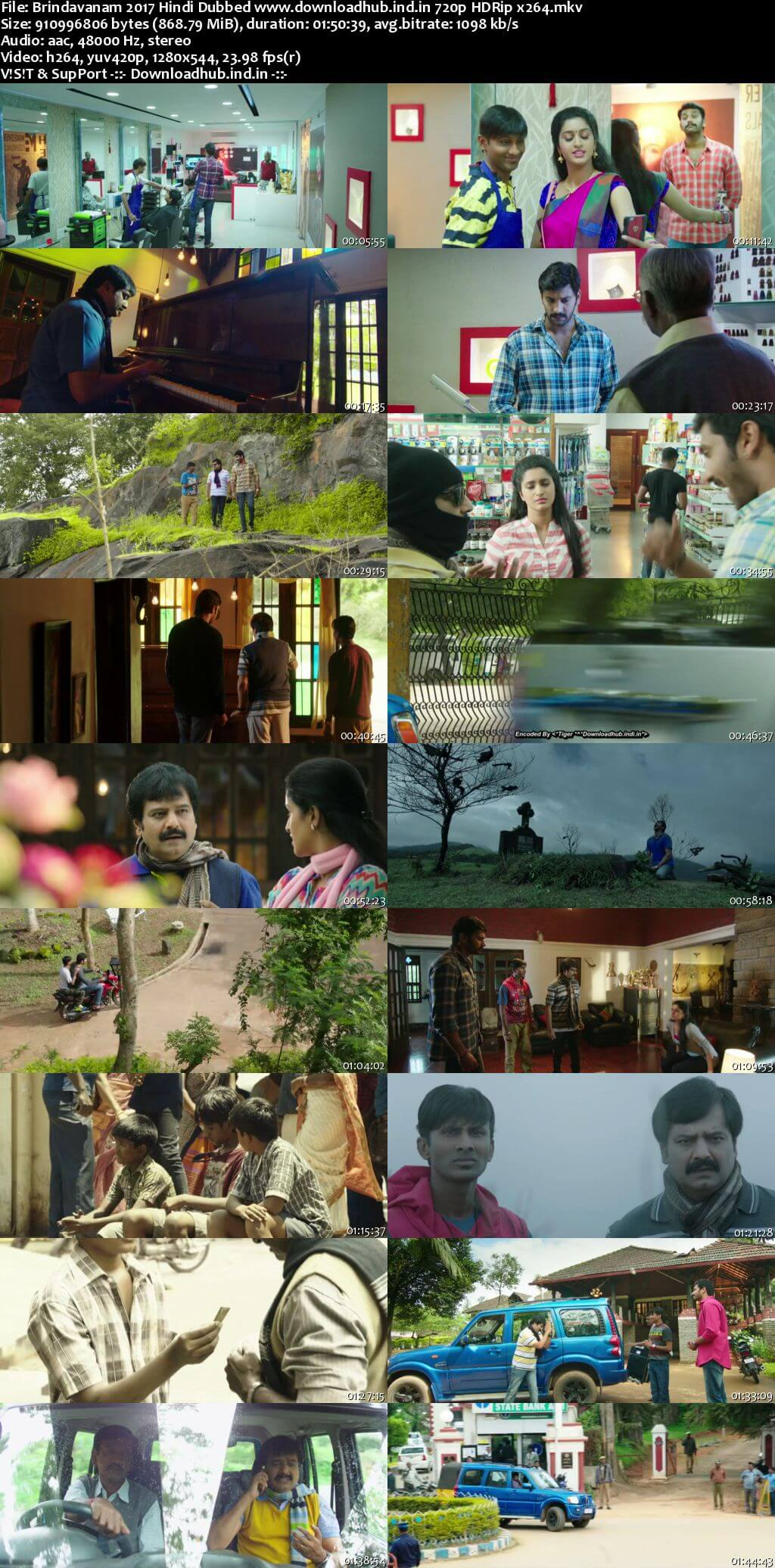 Brindavanam 2017 Hindi Dubbed 720p HDRip x264