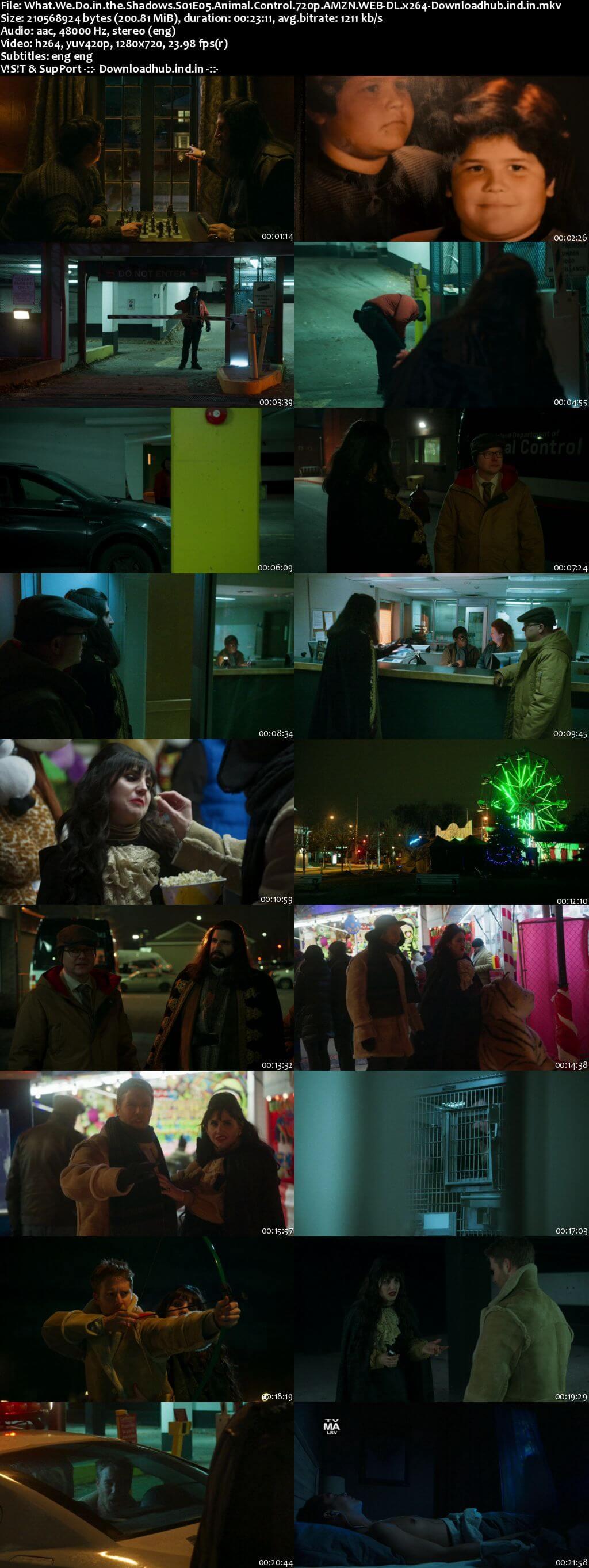 What We Do in the Shadows S01E05 200MB AMZN WEB-DL 720p ESubs