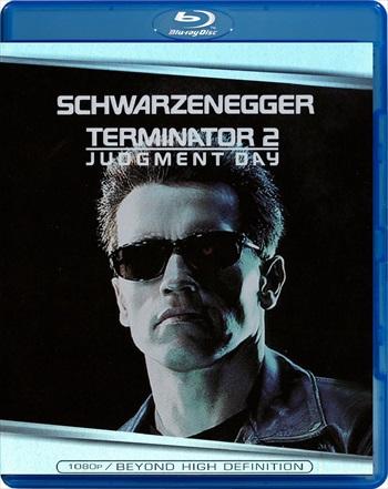 Terminator 2 – Judgment Day 1992 Dual Audio Hindi 480p BluRay 400mb