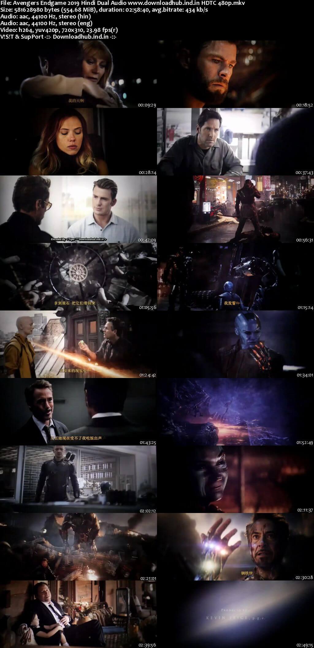 Avengers Endgame 2019 Hindi Dubbed Dual Audio 550MB HDTC 480p
