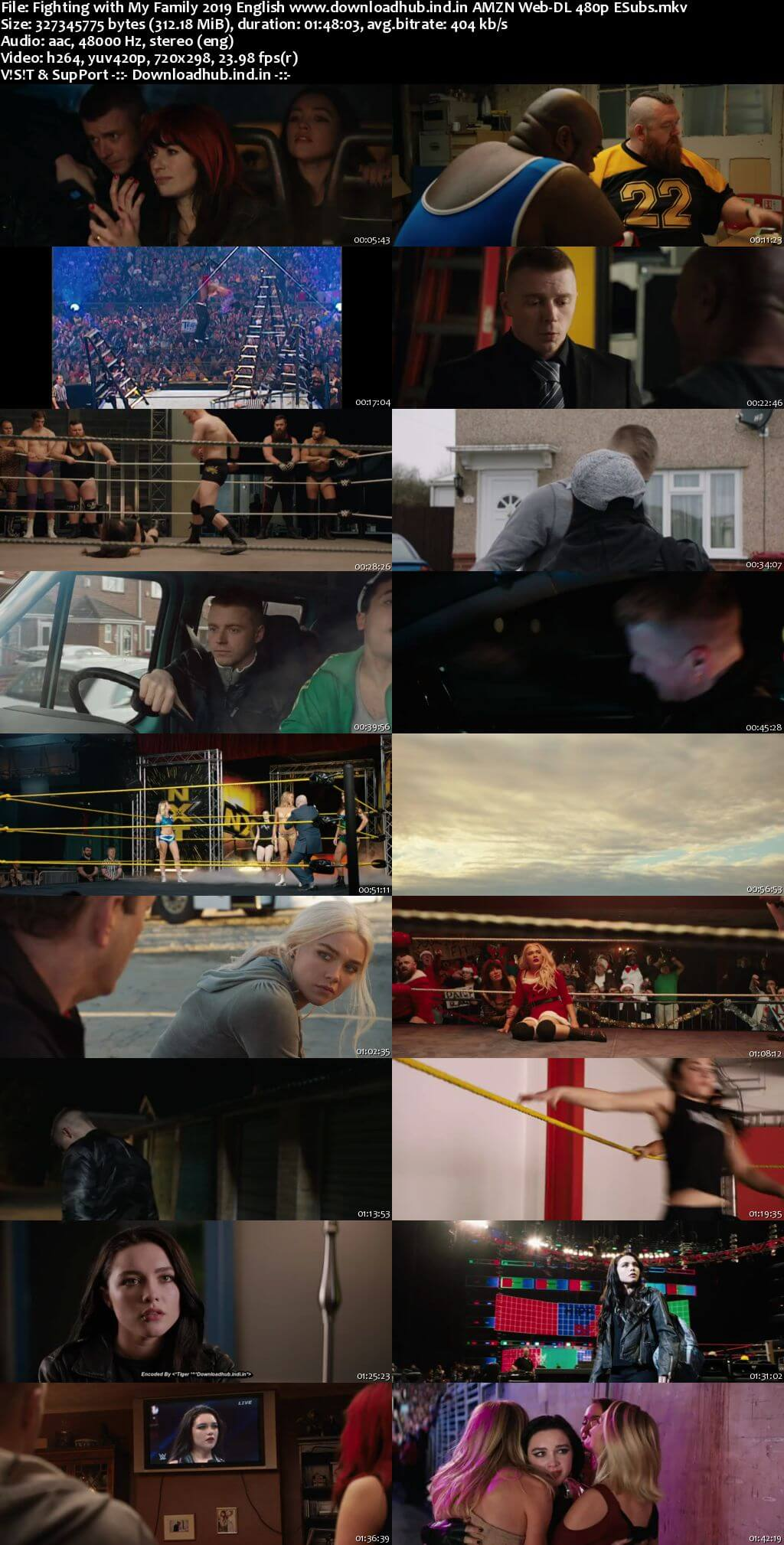 Fighting with My Family 2019 English 300MB AMZN Web-DL 480p ESubs