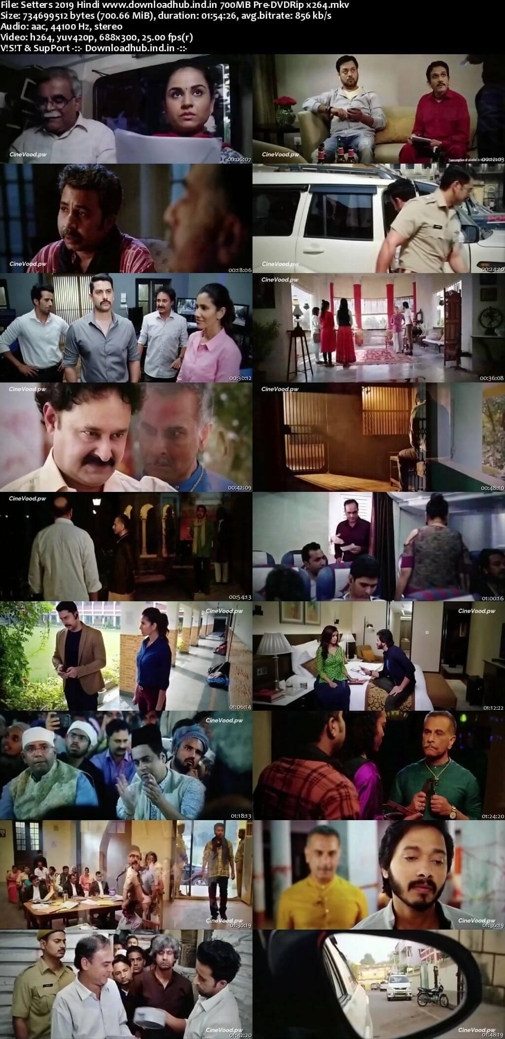Setters 2019 Hindi 700MB Pre-DVDRip x264