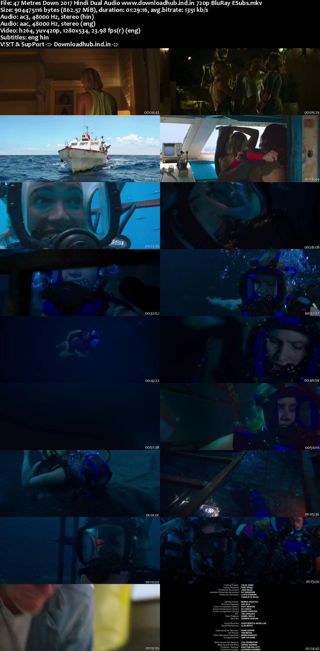 47 Metres Down 2017 Hindi Dual Audio 720p BluRay ESubs