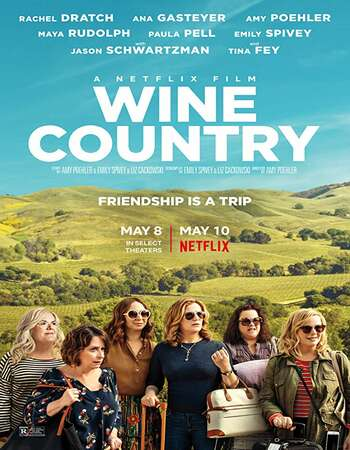 Wine Country 2019 Hindi Dual Audio 720p Web-DL MSubs